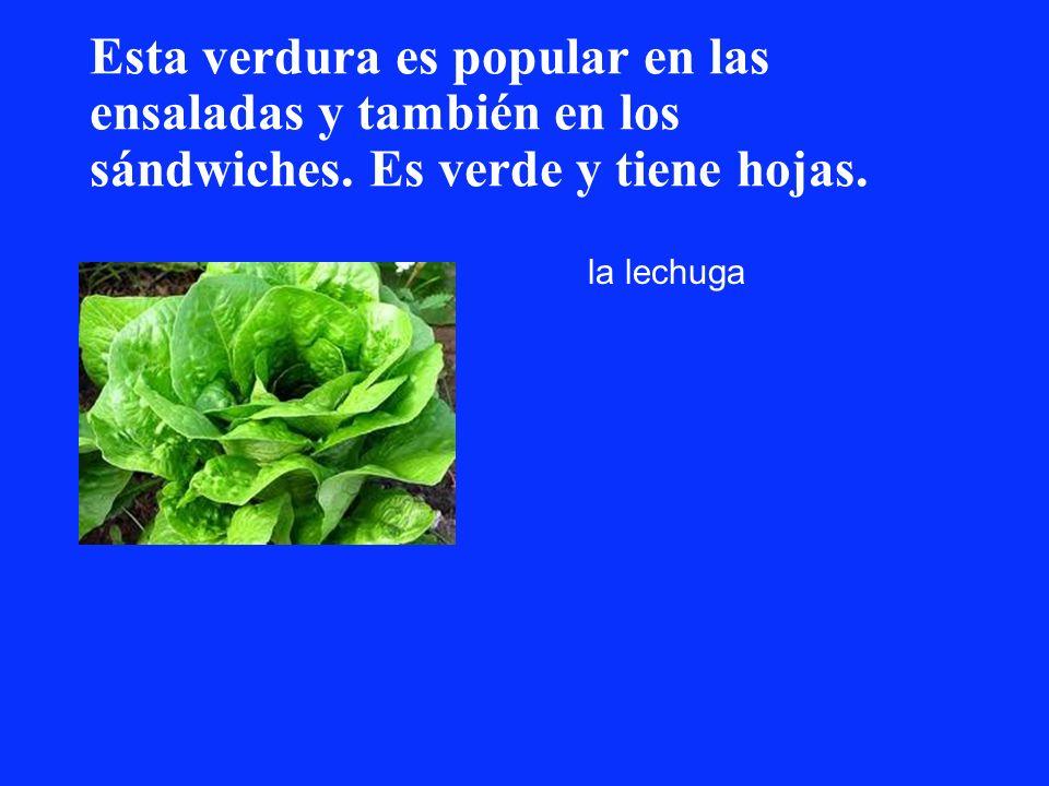Esta verdura es popular en las ensaladas y también en los sándwiches. Es verde y tiene hojas. la lechuga