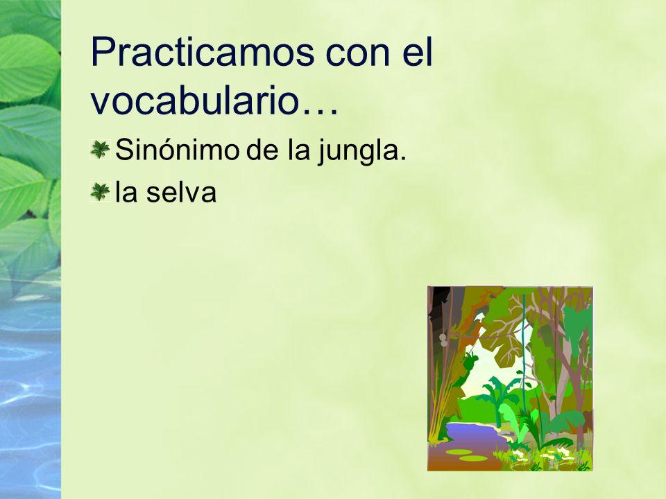 104 Practicamos con el vocabulario… Sinónimo de la jungla. la selva