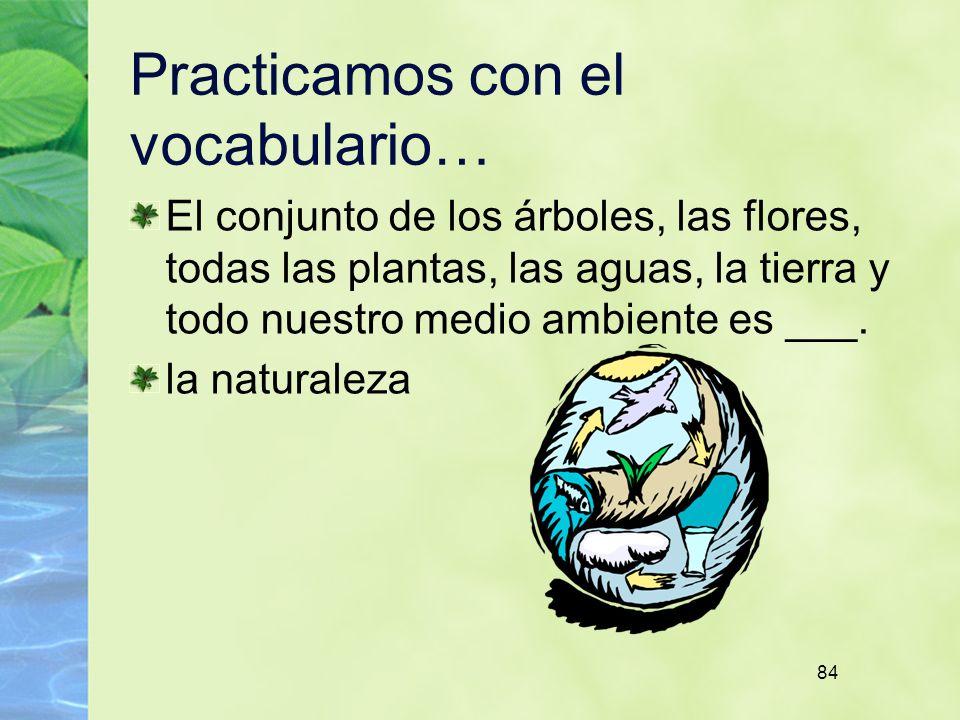 84 Practicamos con el vocabulario… El conjunto de los árboles, las flores, todas las plantas, las aguas, la tierra y todo nuestro medio ambiente es ___.