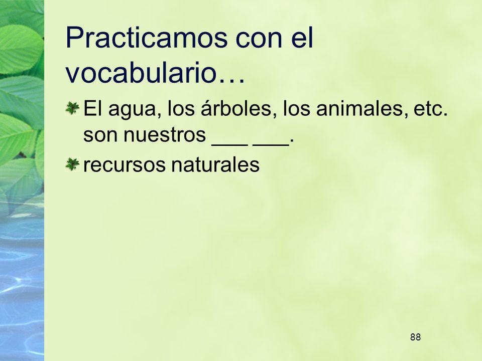 88 Practicamos con el vocabulario… El agua, los árboles, los animales, etc.