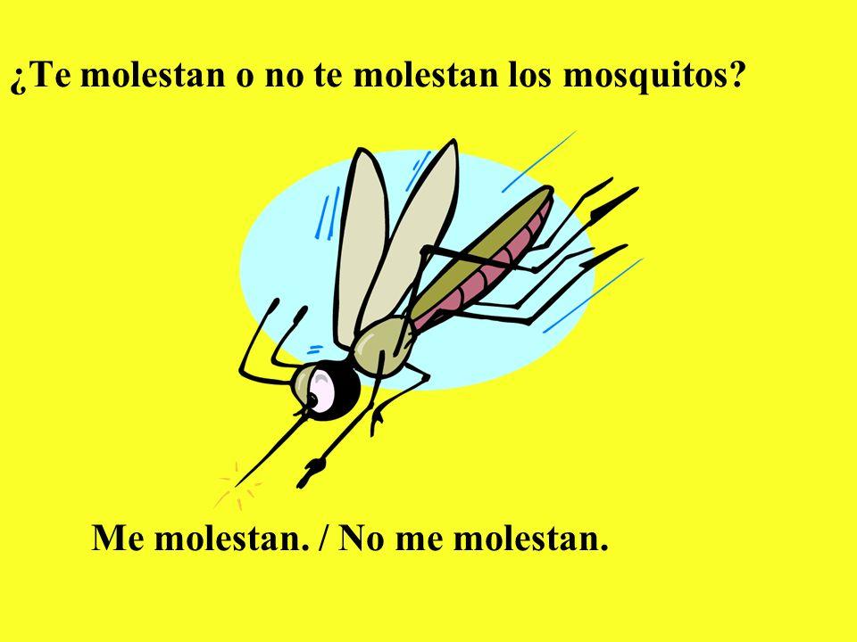 ¿Te molestan o no te molestan los mosquitos? Me molestan. / No me molestan.