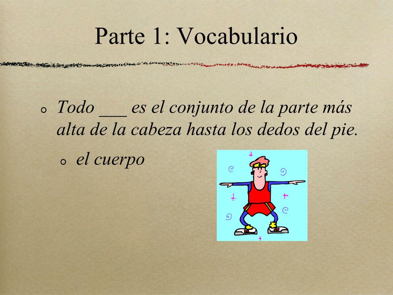 Parte 1: Vocabulario Todo ___ es el conjunto de la parte más alta de la cabeza hasta los dedos del pie. el cuerpo