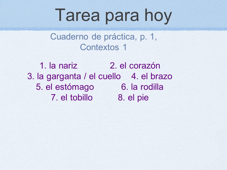 Tarea para hoy Cuaderno de práctica, p. 1, Contextos 1 1. la nariz 2. el corazón 3. la garganta / el cuello 4. el brazo 5. el estómago 6. la rodilla 7