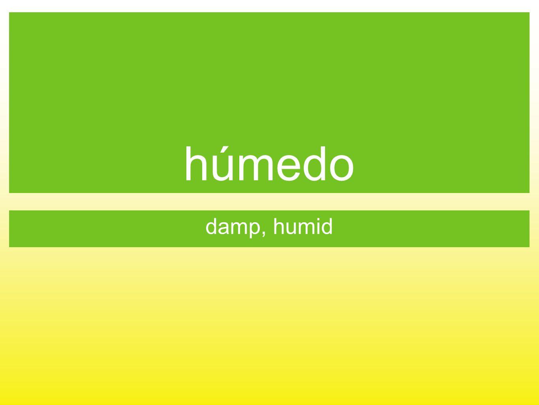 húmedo damp, humid