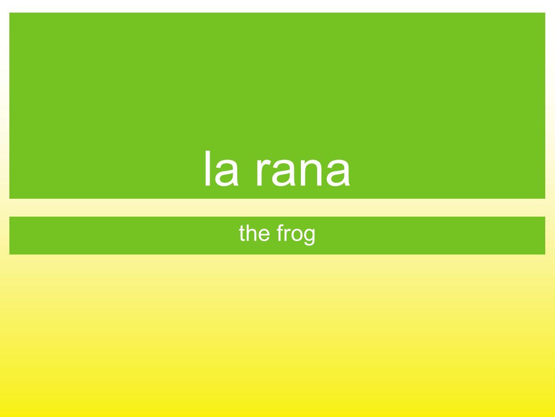 la rana the frog