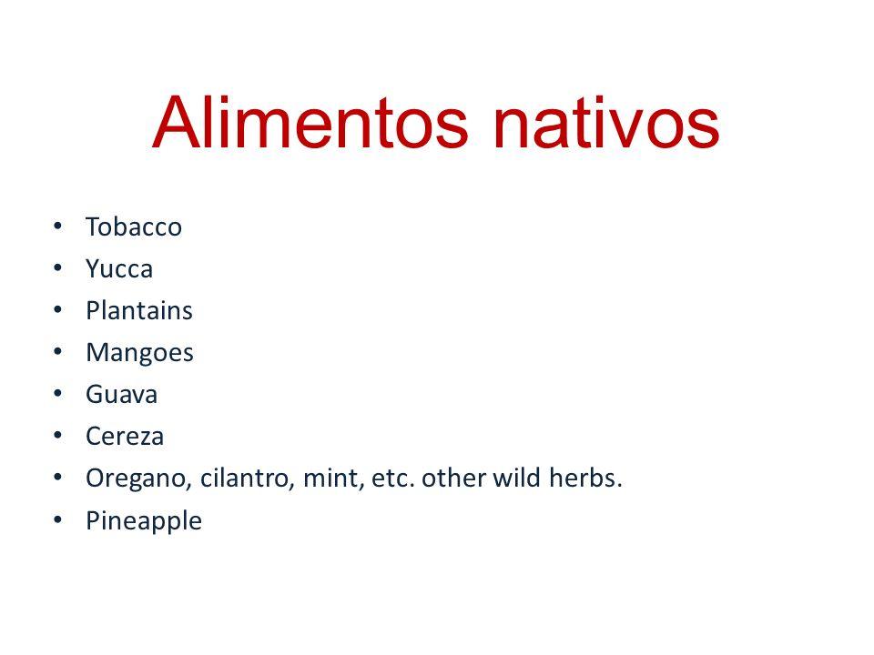 Alimentos nativos Tobacco Yucca Plantains Mangoes Guava Cereza Oregano, cilantro, mint, etc. other wild herbs. Pineapple