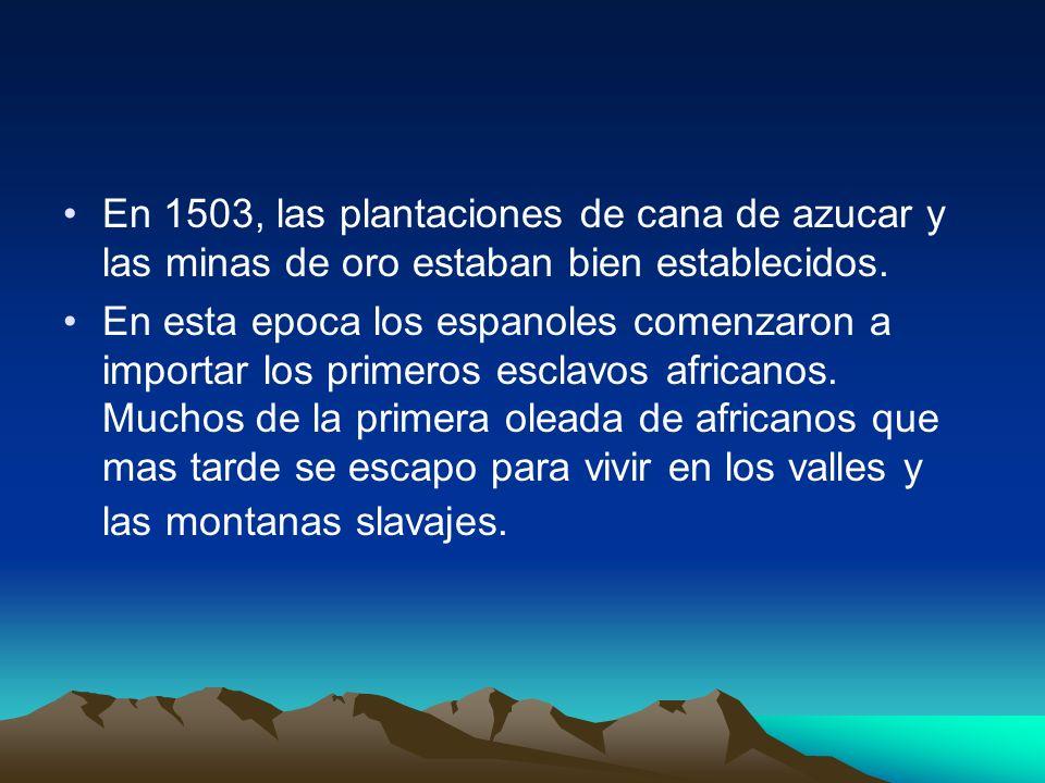 En 1503, las plantaciones de cana de azucar y las minas de oro estaban bien establecidos.