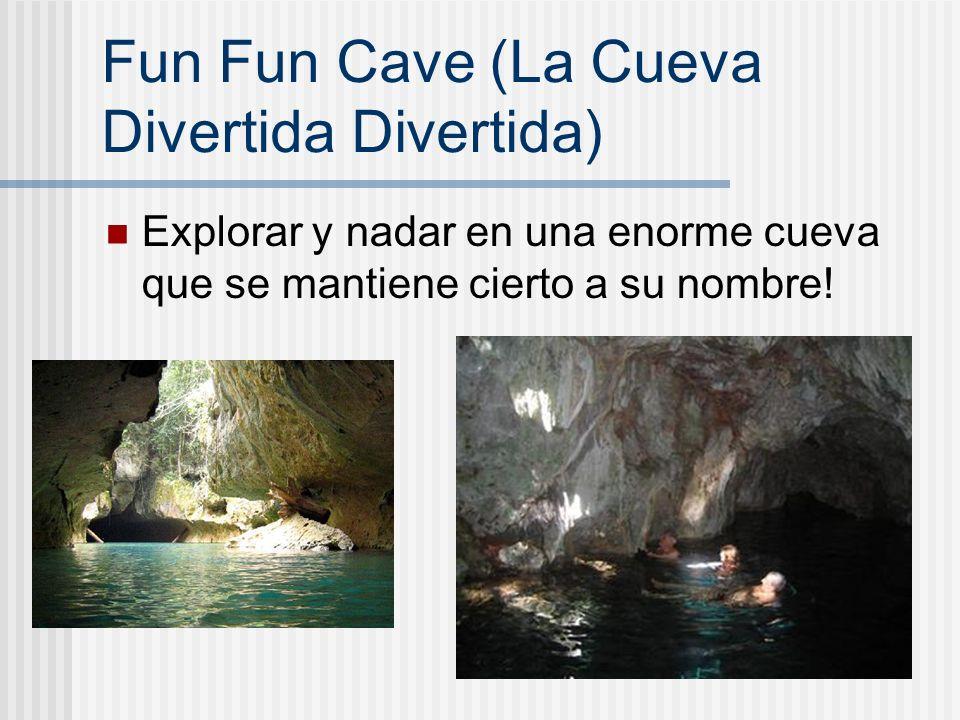 Fun Fun Cave (La Cueva Divertida Divertida) Explorar y nadar en una enorme cueva que se mantiene cierto a su nombre!
