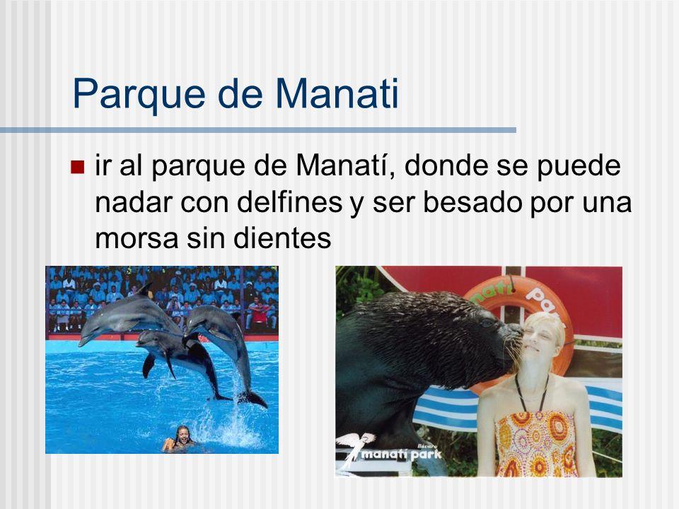 Parque de Manati ir al parque de Manatí, donde se puede nadar con delfines y ser besado por una morsa sin dientes