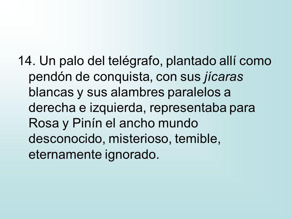 14. Un palo del telégrafo, plantado allí como pendón de conquista, con sus jícaras blancas y sus alambres paralelos a derecha e izquierda, representab