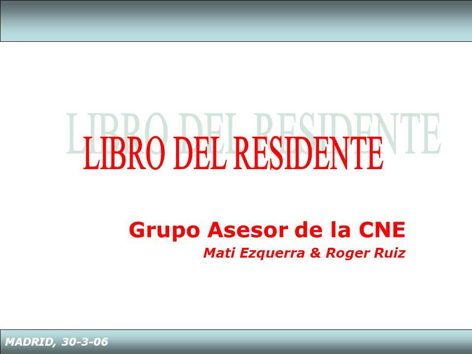 Grupo Asesor de la CNE Mati Ezquerra & Roger Ruiz MADRID, 30-3-06