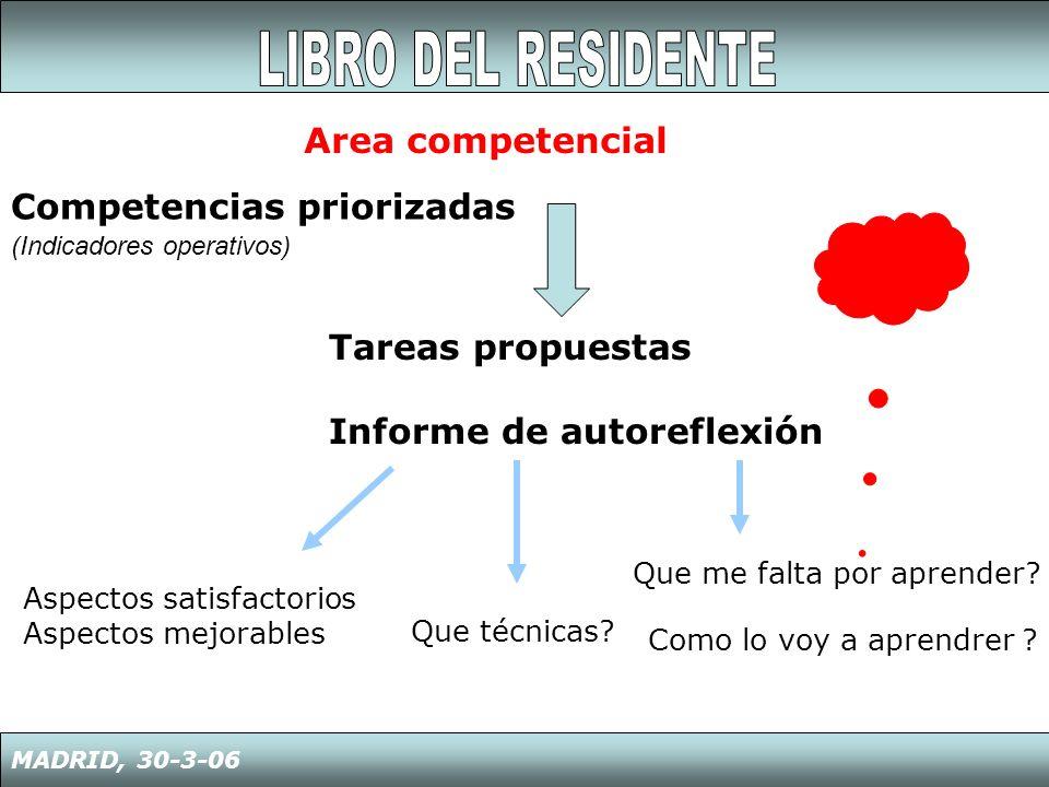 MADRID, 30-3-06 Competencias priorizadas (Indicadores operativos) Area competencial Aspectos satisfactorios Aspectos mejorables Que técnicas? Que me f