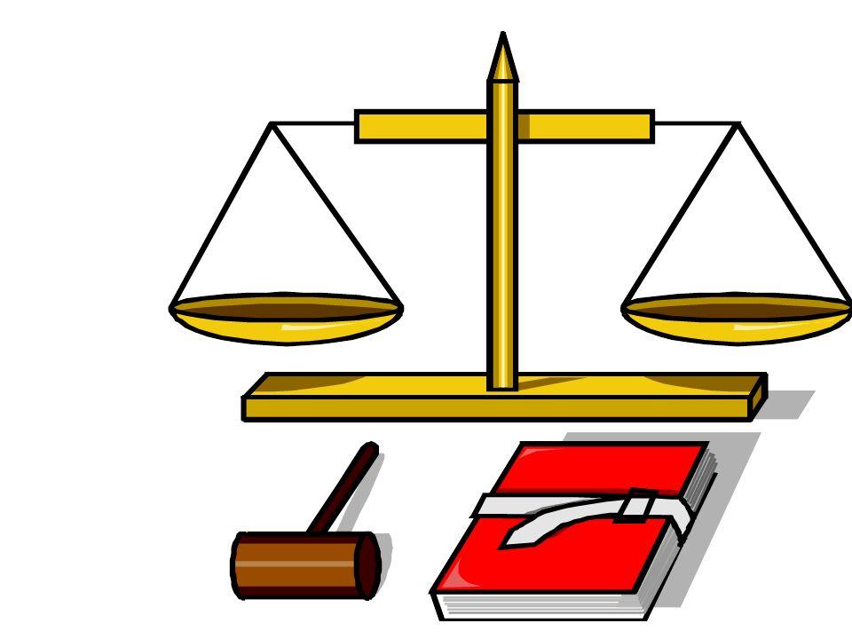 - NO CAUSAS DE EXCLUSIÓN 29 I, II, VIII A) y (III*).