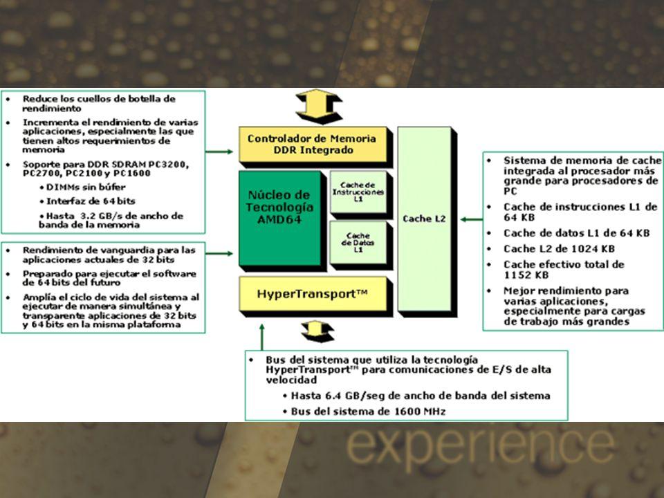 Comparación competitivaProcesador AMD SempronIntel Celeron® D Ancho de banda total del procesador al sistema Bus del sistema: hasta 6.4 GB/s Controlador de memoria: hasta 3.2 GB/s Total: hasta 9.6GB/s Total: hasta 4.3 GB/s Instrucciones 3D y Multimedia Tecnología AMD 3DNow!, SSE2 SSE, SSE2, SSE3 Cache L2 L2: 256KB (externo) Cache efectiva total: 384KB L2: 256KB (interna) Cache efectiva total: 256KB Cache L1 (Instrucciones + Datos) 128KB (64KB + 64KB)28KB Tecnología de procesamiento Tecnología de 130 nanómetros90 nanómetros Diseño térmico 62W73W Empaquetamiento Socket A y 754 pinesPPGA, socket de 478 pines