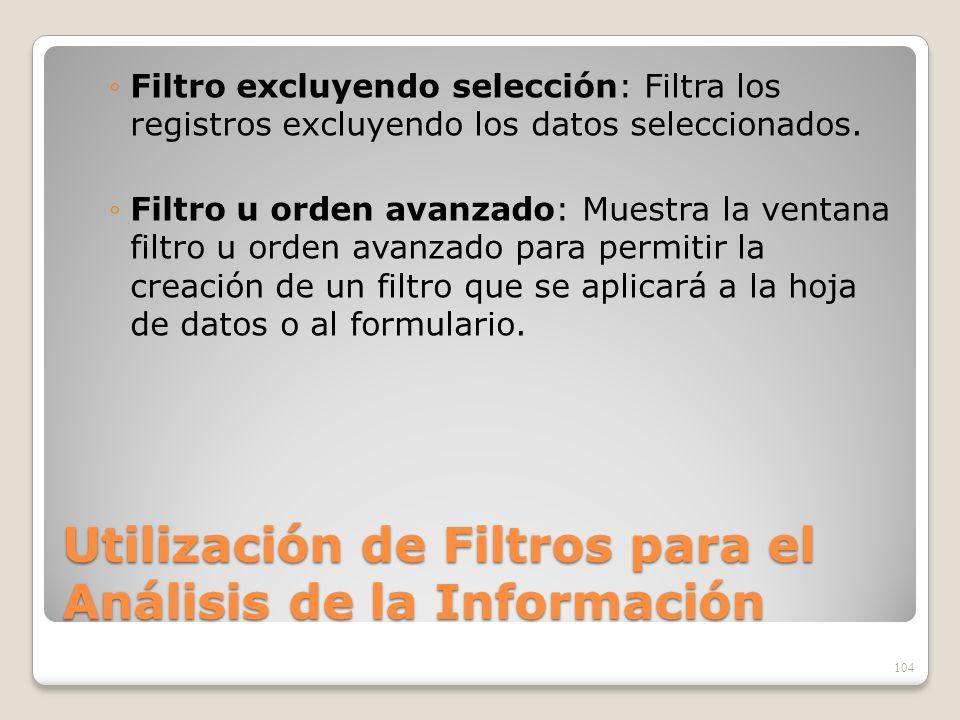 Utilización de Filtros para el Análisis de la Información Filtro excluyendo selección: Filtra los registros excluyendo los datos seleccionados. Filtro