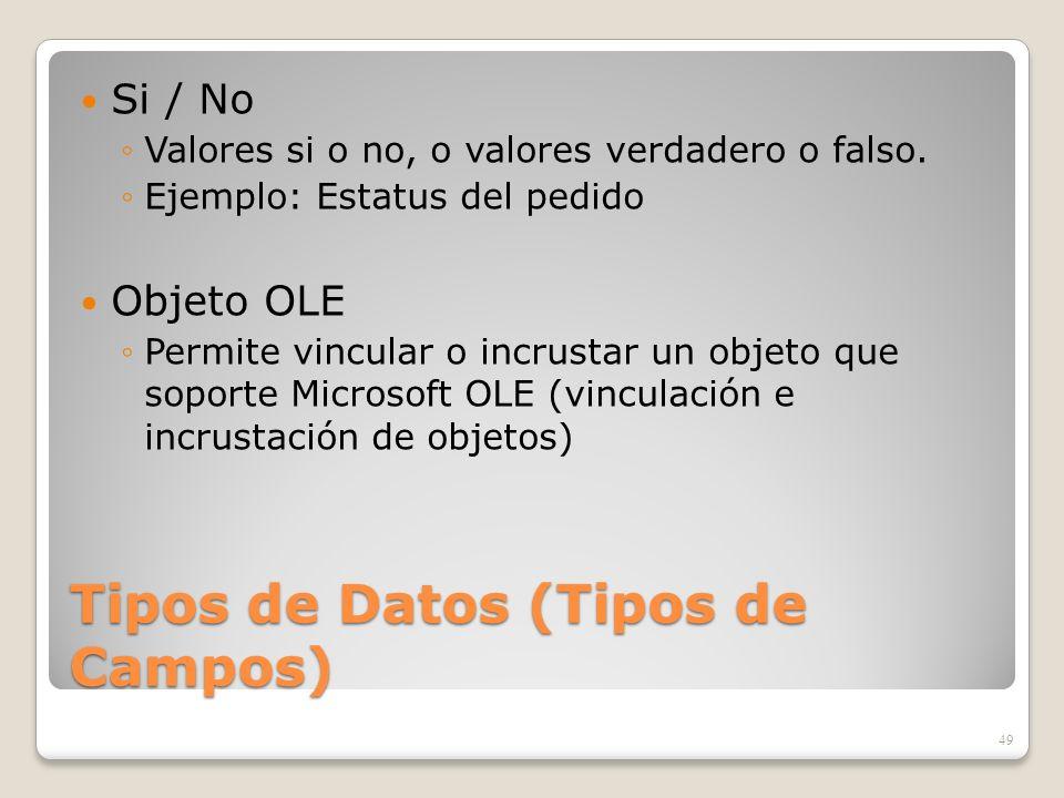 Tipos de Datos (Tipos de Campos) Si / No Valores si o no, o valores verdadero o falso. Ejemplo: Estatus del pedido Objeto OLE Permite vincular o incru
