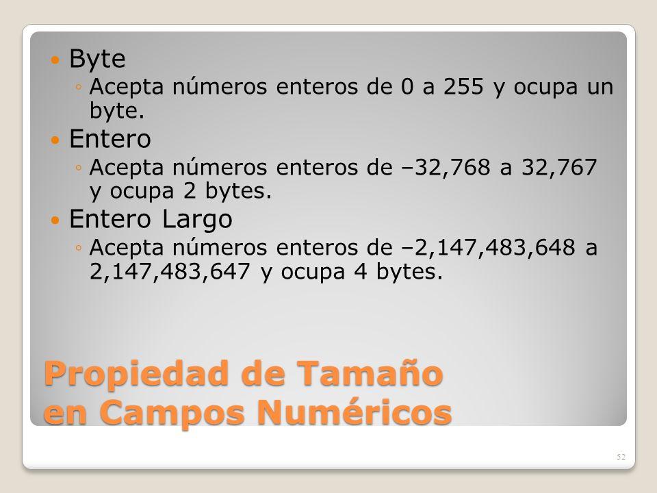 Propiedad de Tamaño en Campos Numéricos Byte Acepta números enteros de 0 a 255 y ocupa un byte. Entero Acepta números enteros de –32,768 a 32,767 y oc