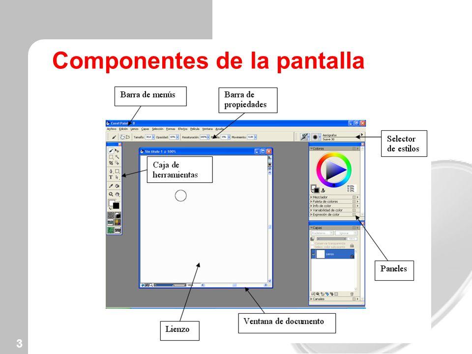 3 Componentes de la pantalla