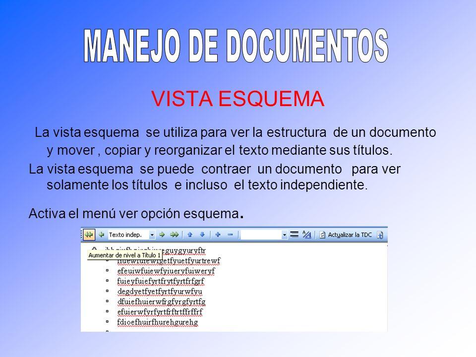 VISTA ESQUEMA La vista esquema se utiliza para ver la estructura de un documento y mover, copiar y reorganizar el texto mediante sus títulos. La vista