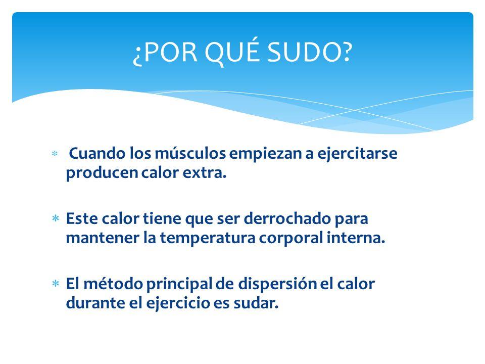 La cantidad de sudor que producimos depende de: -El grado de intensidad del ejercicio.