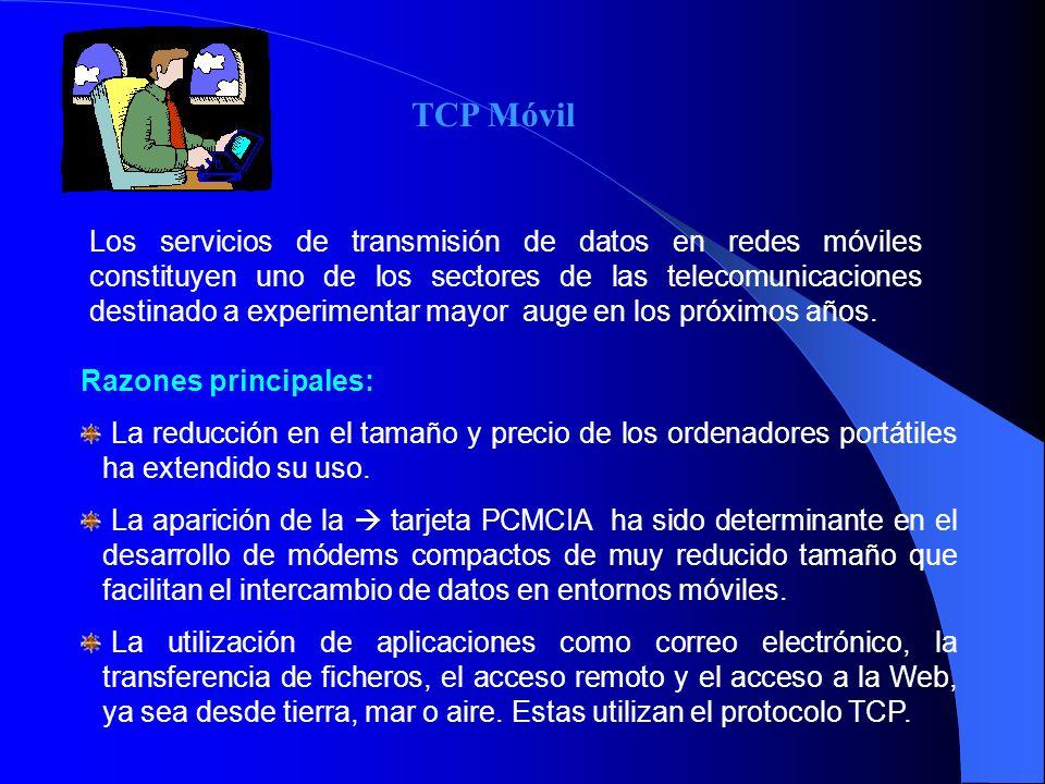 Los servicios de transmisión de datos en redes móviles constituyen uno de los sectores de las telecomunicaciones destinado a experimentar mayor auge e