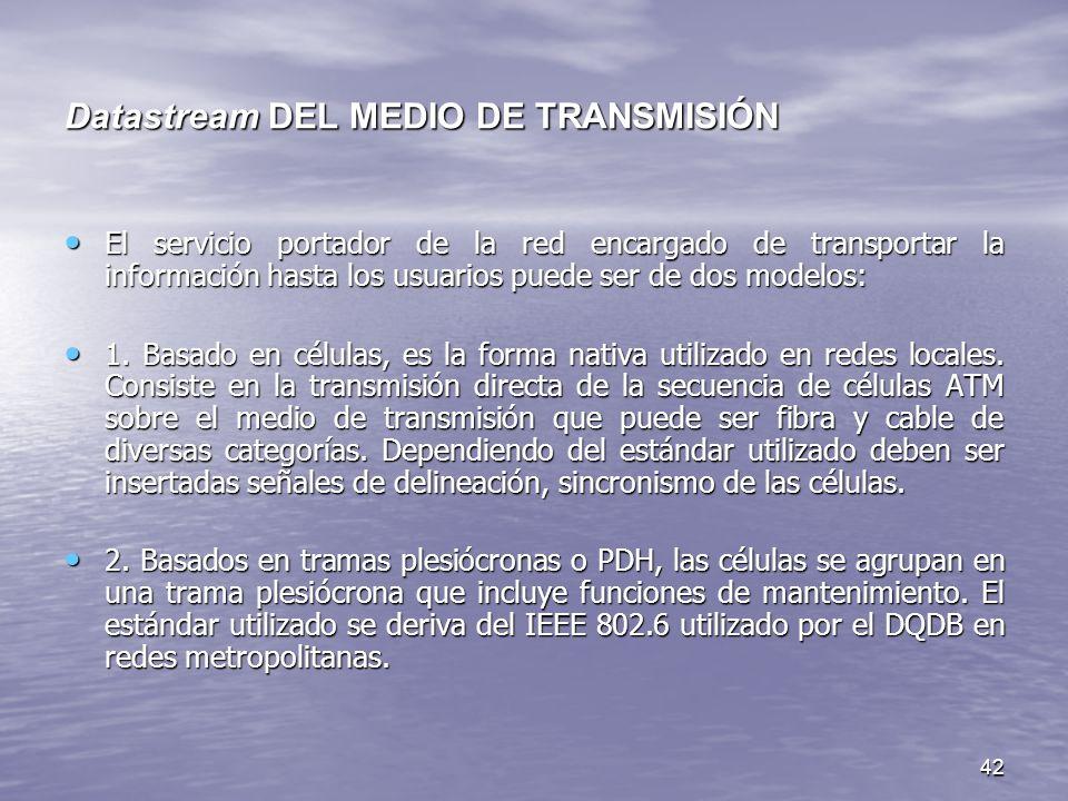 42 Datastream DEL MEDIO DE TRANSMISIÓN El servicio portador de la red encargado de transportar la información hasta los usuarios puede ser de dos mode