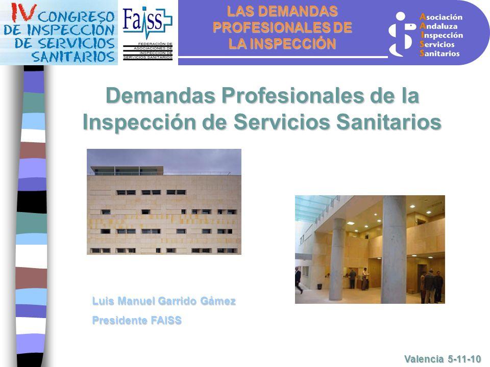 LAS DEMANDAS PROFESIONALES DE LA INSPECCIÓN Valencia 5-11-10 Demandas Profesionales de la Inspección de Servicios Sanitarios Luis Manuel Garrido Gámez Presidente FAISS