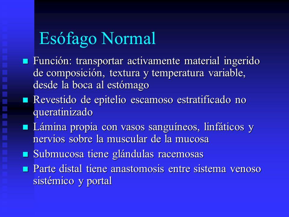 Esófago Normal Función: transportar activamente material ingerido de composición, textura y temperatura variable, desde la boca al estómago Función: t