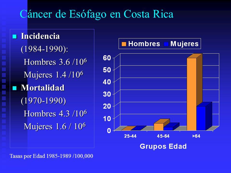 Cáncer de Esófago en Costa Rica Incidencia Incidencia(1984-1990): Hombres 3.6 /10 6 Mujeres 1.4 /10 6 Mortalidad Mortalidad(1970-1990) Hombres 4.3 /10