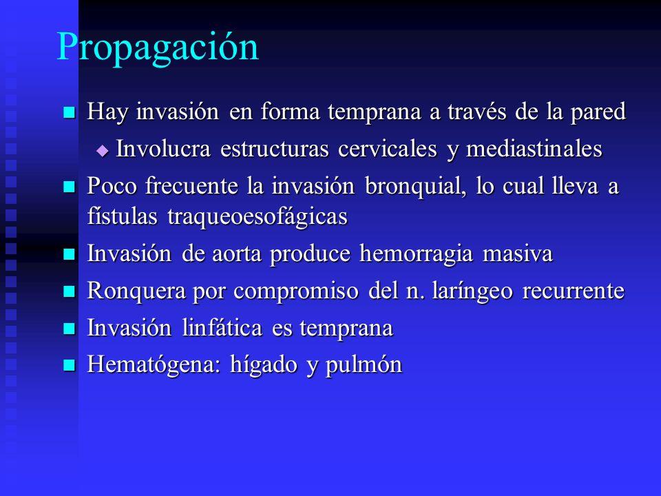 Propagación Hay invasión en forma temprana a través de la pared Hay invasión en forma temprana a través de la pared Involucra estructuras cervicales y