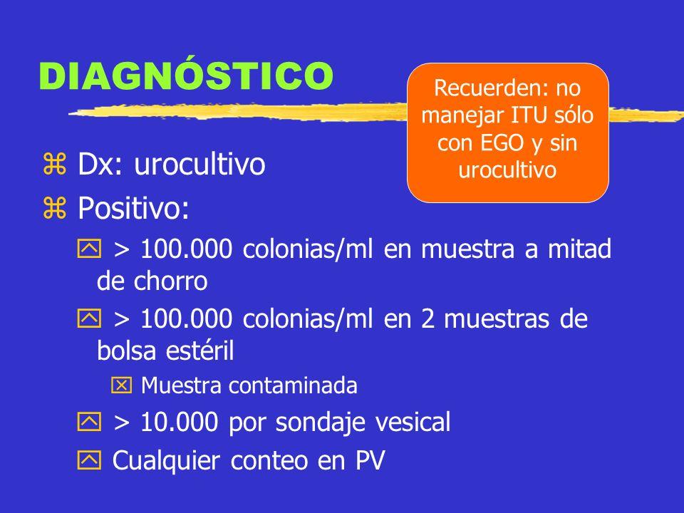 TOMA DE UROCULTIVO ASPIRADO SUPRAPÚBICO CATETERISMO VESICAL TÉCNICA DEL SEGUNDO CHORRO RECOLECCIÓN CON BOLSA