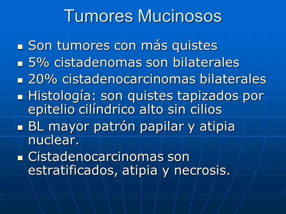 Tumores Mucinosos Son tumores con más quistes Son tumores con más quistes 5% cistadenomas son bilaterales 5% cistadenomas son bilaterales 20% cistaden