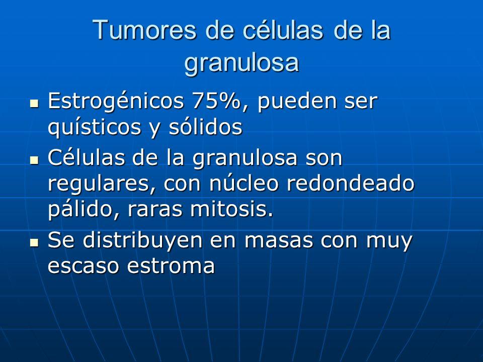 Tumores de células de la granulosa Estrogénicos 75%, pueden ser quísticos y sólidos Estrogénicos 75%, pueden ser quísticos y sólidos Células de la gra