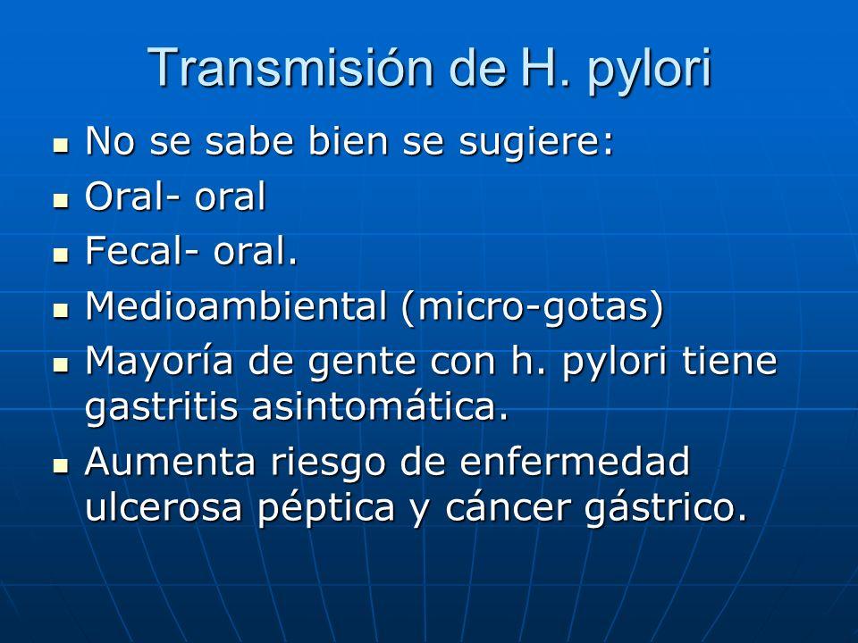 Transmisión de H. pylori No se sabe bien se sugiere: No se sabe bien se sugiere: Oral- oral Oral- oral Fecal- oral. Fecal- oral. Medioambiental (micro
