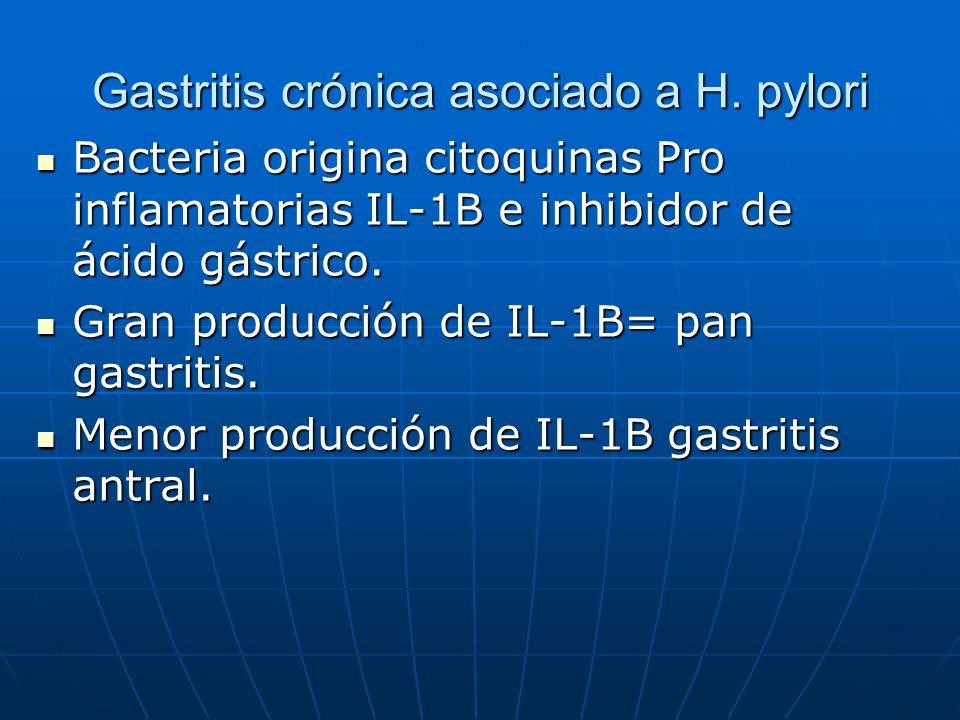 Gastritis crónica asociado a H. pylori Bacteria origina citoquinas Pro inflamatorias IL-1B e inhibidor de ácido gástrico. Bacteria origina citoquinas