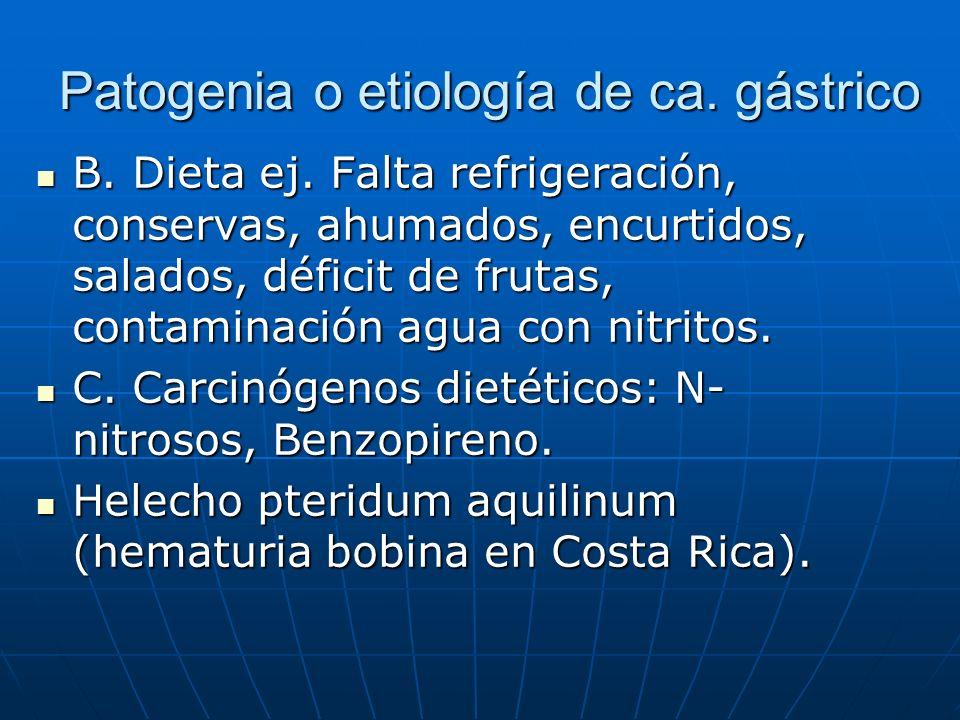 Patogenia o etiología de ca. gástrico B. Dieta ej. Falta refrigeración, conservas, ahumados, encurtidos, salados, déficit de frutas, contaminación agu
