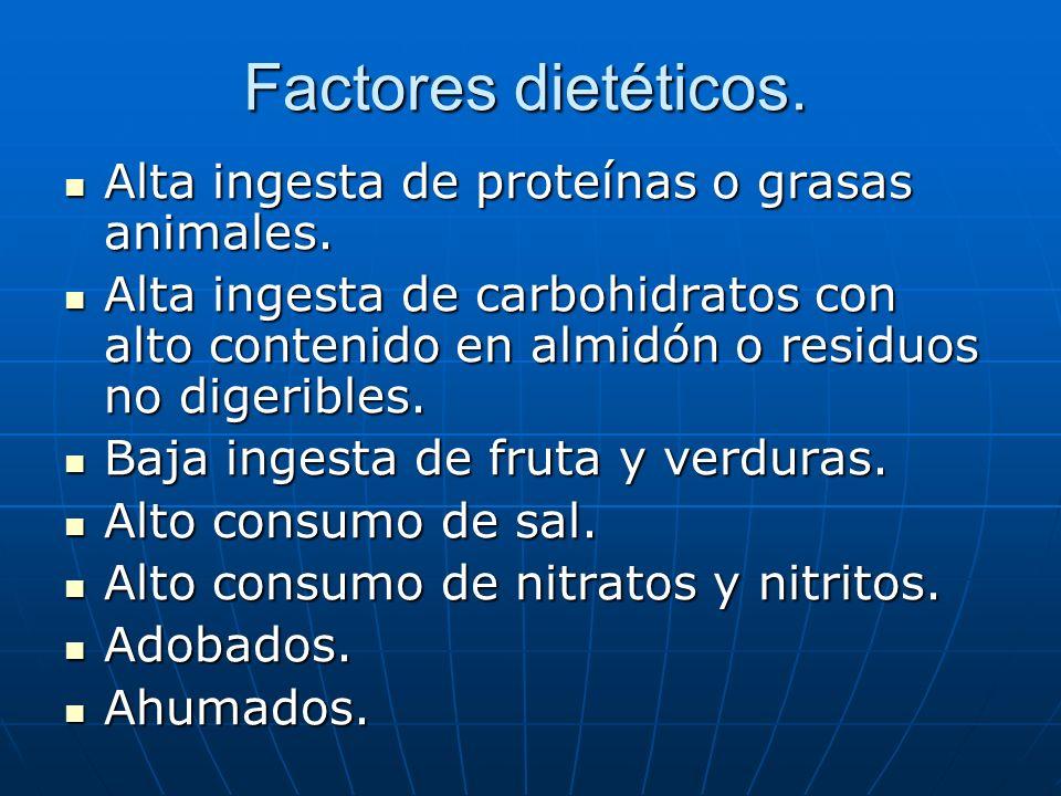 Factores dietéticos. Alta ingesta de proteínas o grasas animales. Alta ingesta de proteínas o grasas animales. Alta ingesta de carbohidratos con alto