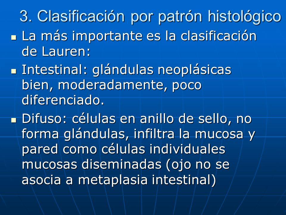 3. Clasificación por patrón histológico La más importante es la clasificación de Lauren: La más importante es la clasificación de Lauren: Intestinal: