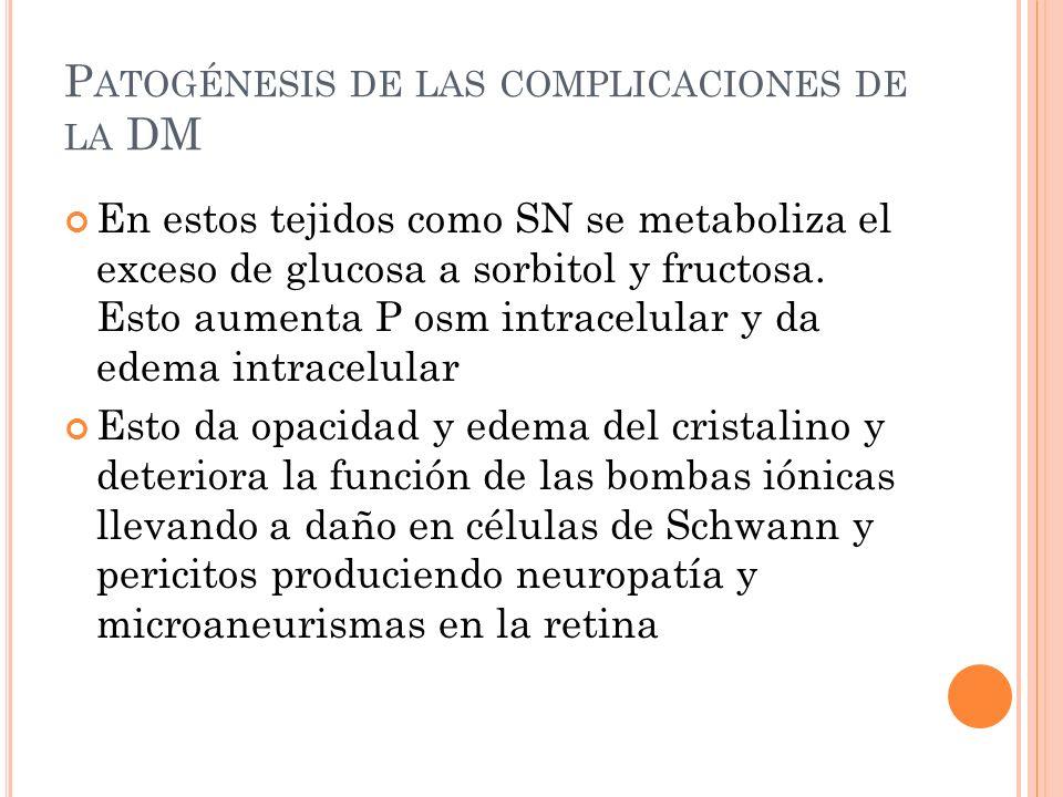 P ATOGÉNESIS DE LAS COMPLICACIONES DE LA DM En estos tejidos como SN se metaboliza el exceso de glucosa a sorbitol y fructosa.