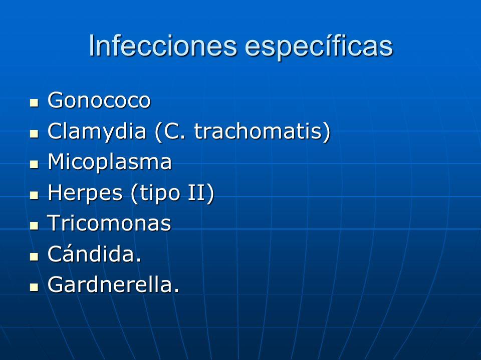Infecciones específicas Gonococo Gonococo Clamydia (C. trachomatis) Clamydia (C. trachomatis) Micoplasma Micoplasma Herpes (tipo II) Herpes (tipo II)