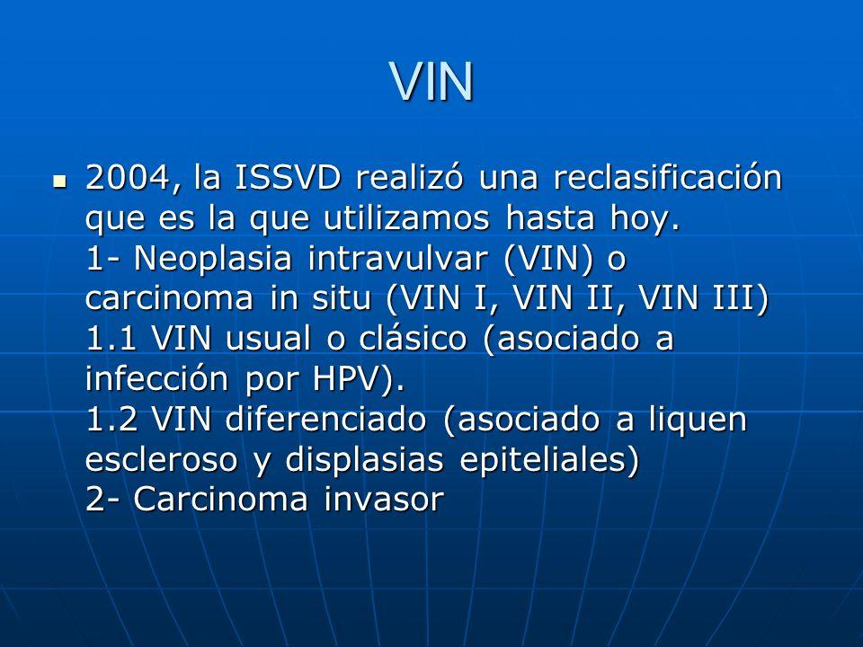 VIN 2004, la ISSVD realizó una reclasificación que es la que utilizamos hasta hoy. 1- Neoplasia intravulvar (VIN) o carcinoma in situ (VIN I, VIN II,