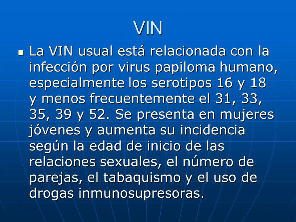 VIN La VIN usual está relacionada con la infección por virus papiloma humano, especialmente los serotipos 16 y 18 y menos frecuentemente el 31, 33, 35
