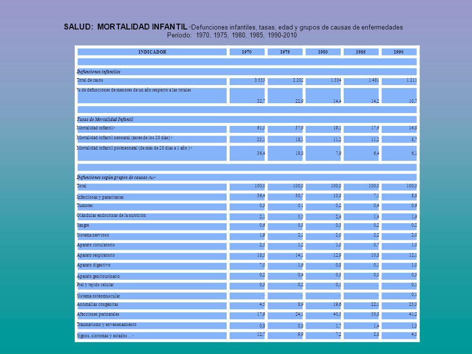 INDICADOR19701975198019851990 Defunciones infantiles Total de casos3.5532.2021.3341.4811.211 % de defunciones de menores de un año respecto a las tota