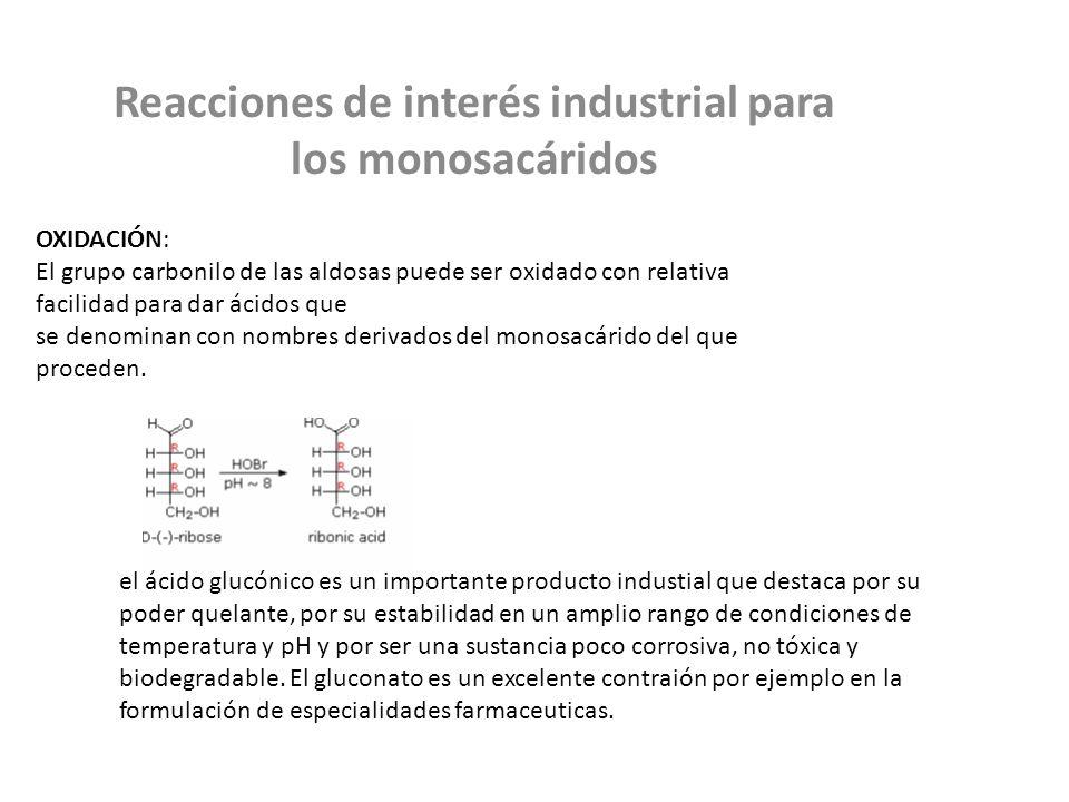 Reacciones de interés industrial para los monosacáridos OXIDACIÓN: El grupo carbonilo de las aldosas puede ser oxidado con relativa facilidad para dar