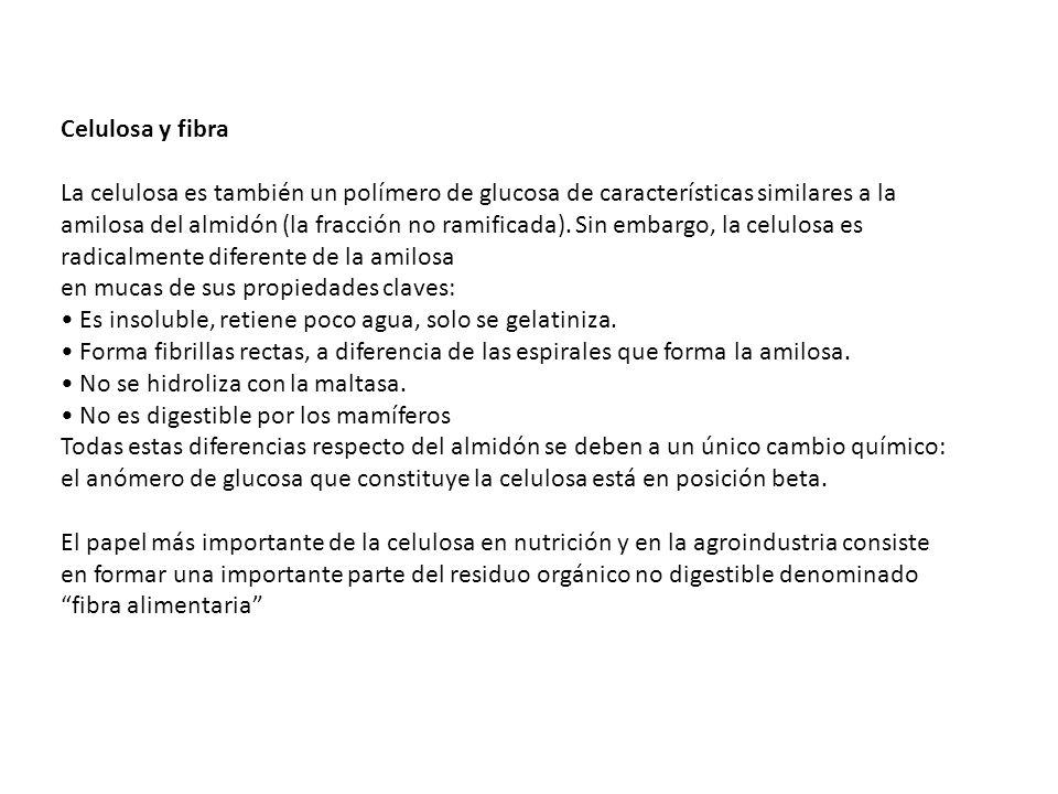 DIFERENTES COMPONENTES QUE SE ENCUENTRAN EN LA FIBRA.