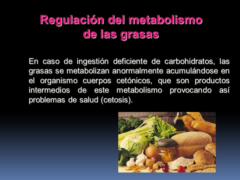 Si el aporte de carbohidratos es insuficiente, se utilizarán las proteínas para fines energéticos, relegando su función plástica. Ahorro de proteínas