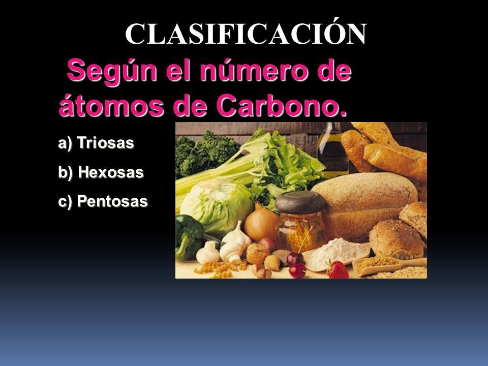 5. CLASIFICACIÓN Según el número de átomos de Carbonos. Según el número de átomos de Carbonos. Según el número de moléculas. Según el número de molécu