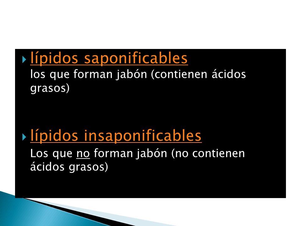 lípidos saponificables los que forman jabón (contienen ácidos grasos) lípidos saponificables lípidos insaponificables Los que no forman jabón (no cont