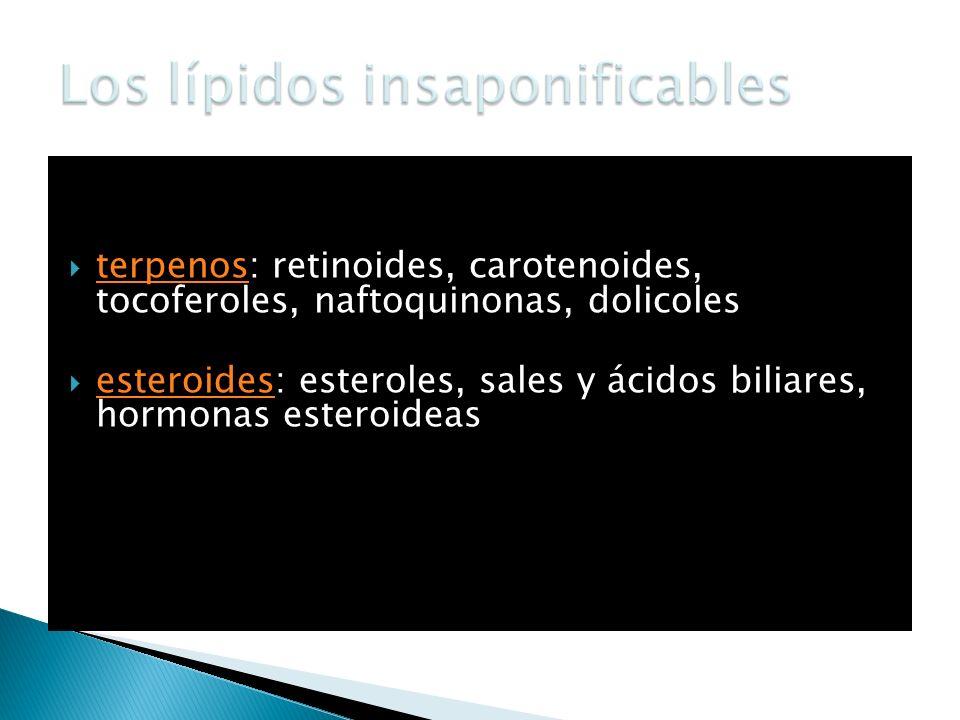 terpenos: retinoides, carotenoides, tocoferoles, naftoquinonas, dolicoles terpenos esteroides: esteroles, sales y ácidos biliares, hormonas esteroidea