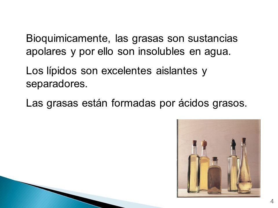 4 Bioquimicamente, las grasas son sustancias apolares y por ello son insolubles en agua. Los lípidos son excelentes aislantes y separadores. Las grasa